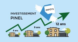 lois pinel flat invest
